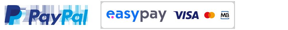 Empresas de Pagamento Online